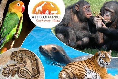 Επίσκεψη στο Αττικό Ζωολογικό Πάρκο με ειδική τιμή για τους Αλιμιώτες και τις Αλιμιώτισσες