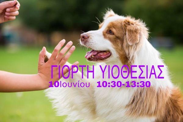 Αύριο η 2η Γιορτή Υιοθεσίας Σκύλου στον Άλιμο
