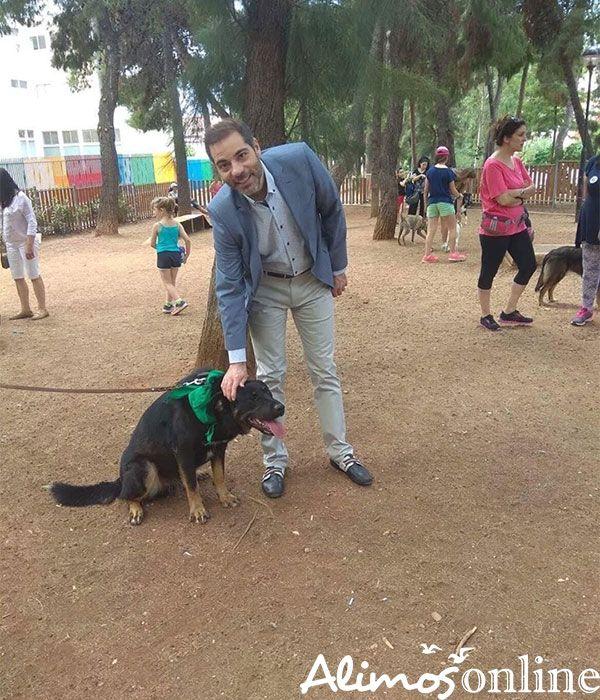 Πανέμορφα σκυλάκια περίμεναν να βρουν το μελλοντικό τους σπίτι σήμερα στην Πλ. Καραϊσκάκη
