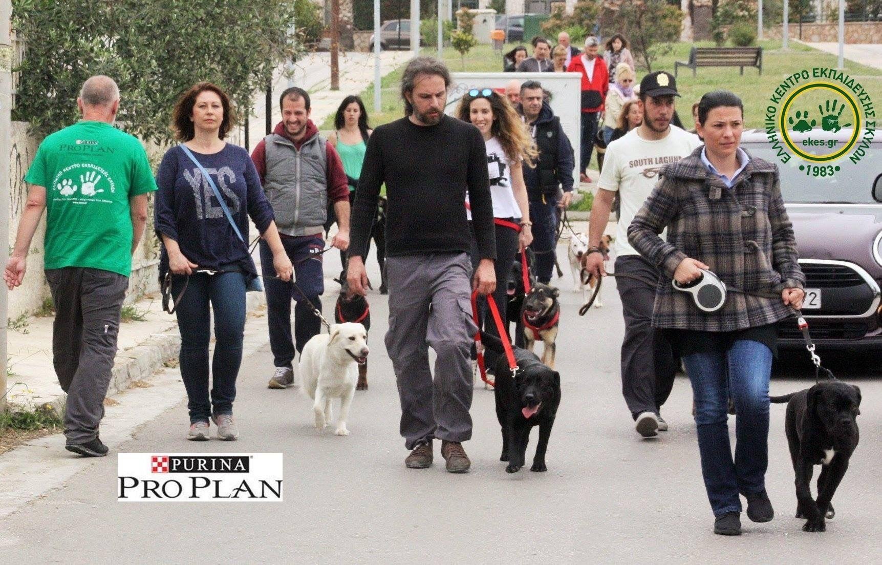 «Μαθαίνω να κυκλοφορώ με τον σκύλο μου» : Μία εκδήλωση στους δρόμους του Αλίμου