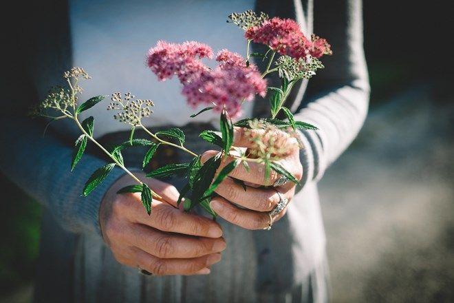 Θεραπευτικοί Κήποι: Ανακαλύψτε με όλες τις αισθήσεις σας τα μεσογειακά φυτά του ΚΠΙΣΝ