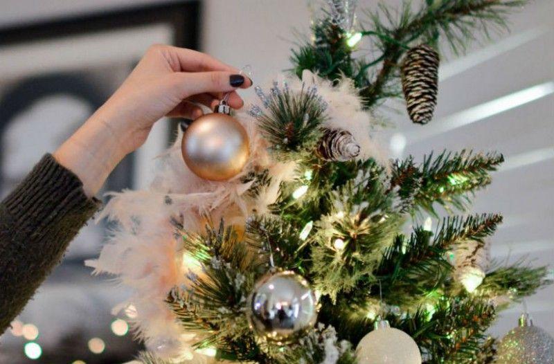 Ξεκινά σήμερα η πώληση των φυσικών χριστουγεννιάτικων δέντρων