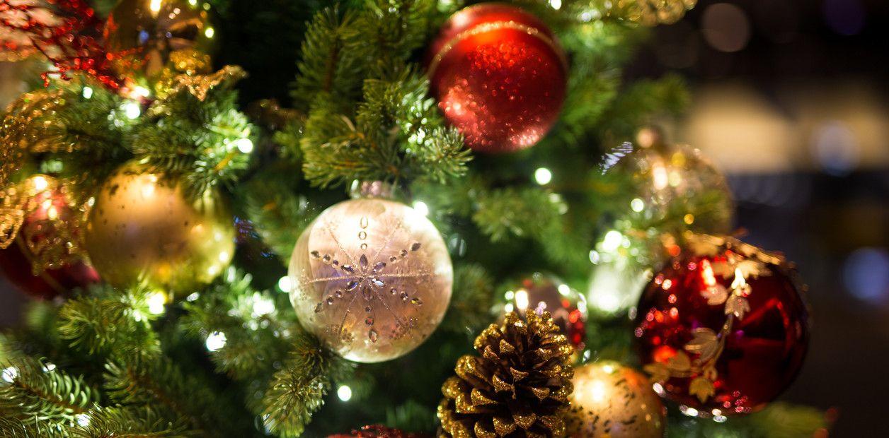 Παλαιό Φάληρο: Το δέντρο προσφοράς και αγάπης «ζωντανεύει» ξανά