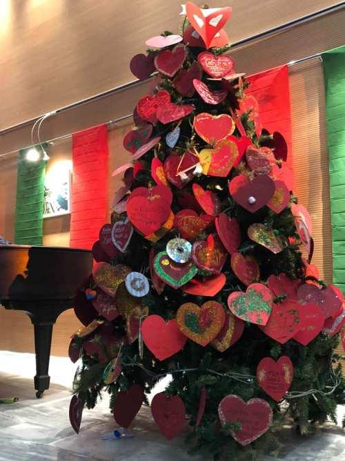 Παλαιό Φάληρο: Πλήθος κόσμου παρευρέθηκε στη φωταγώγηση του δέντρου προσφοράς και αγάπης