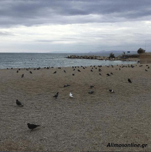 Ο καιρός στον Άλιμο – Η θερμοκρασία πέφτει αισθητά
