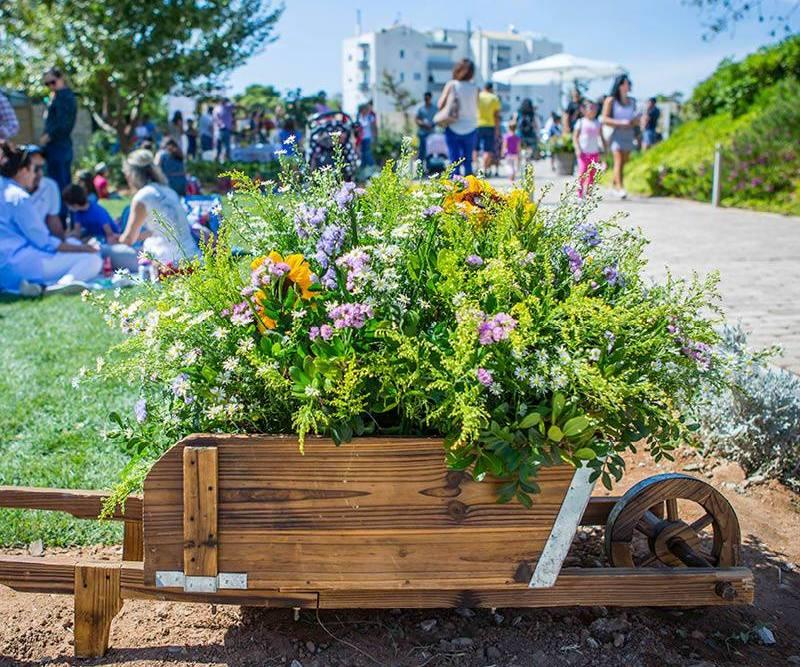 Επίσκεψη στο Κτήμα Αρίστη και tips για να φτιάξουμε τον δικό μας κήπο, με ειδική τιμή για τους Αλιμιώτες