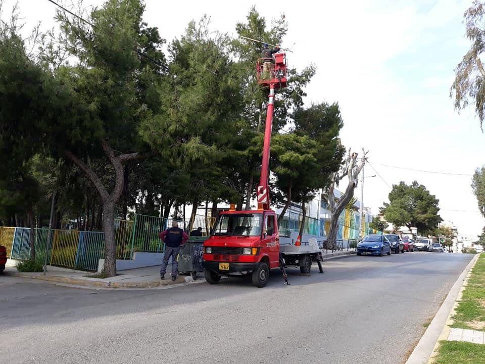 Καθαρισμός των δέντρων του Αλίμου από τα κουκούλια