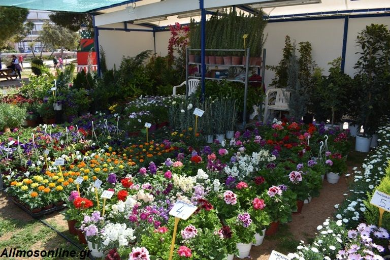 Την Τρίτη τα επίσημα εγκαίνια της Γιορτής Λουλουδιών