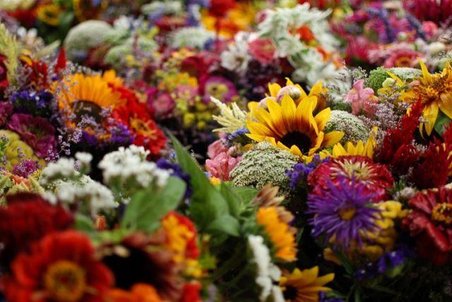 Μετά από τέσσερα χρόνια, η έκθεση λουλουδιών επιστρέφει στη Βάρκιζα
