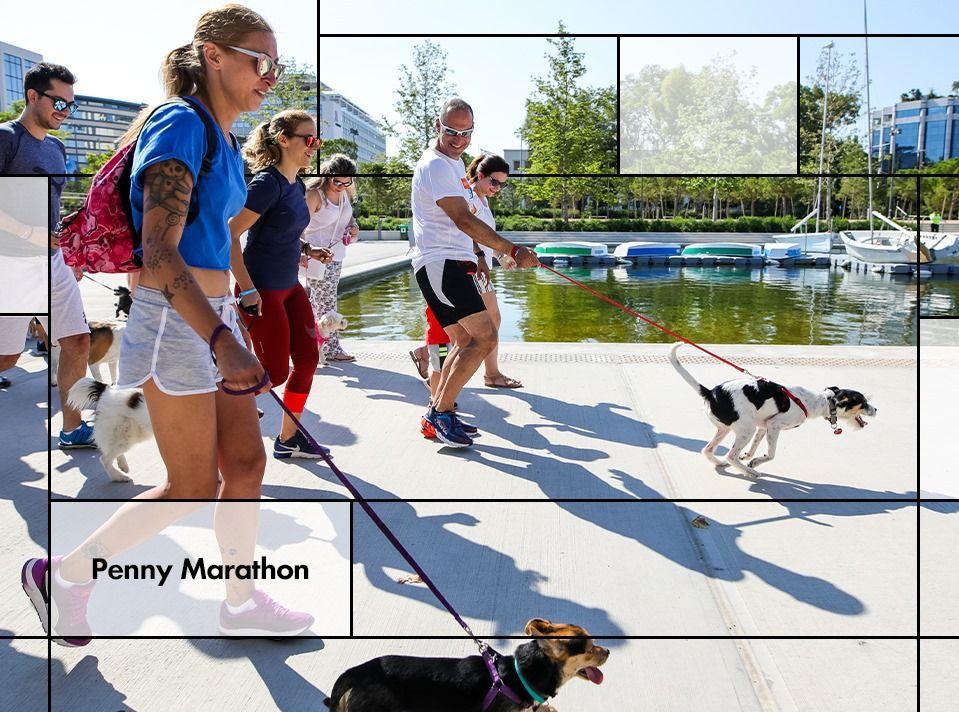 Την Κυριακή διοργανώνεται το Penny Marathon στο ΚΠΙΣΝ- Πάρτε τα σκυλάκια σας και τρέξτε με το σκυλάκι σας