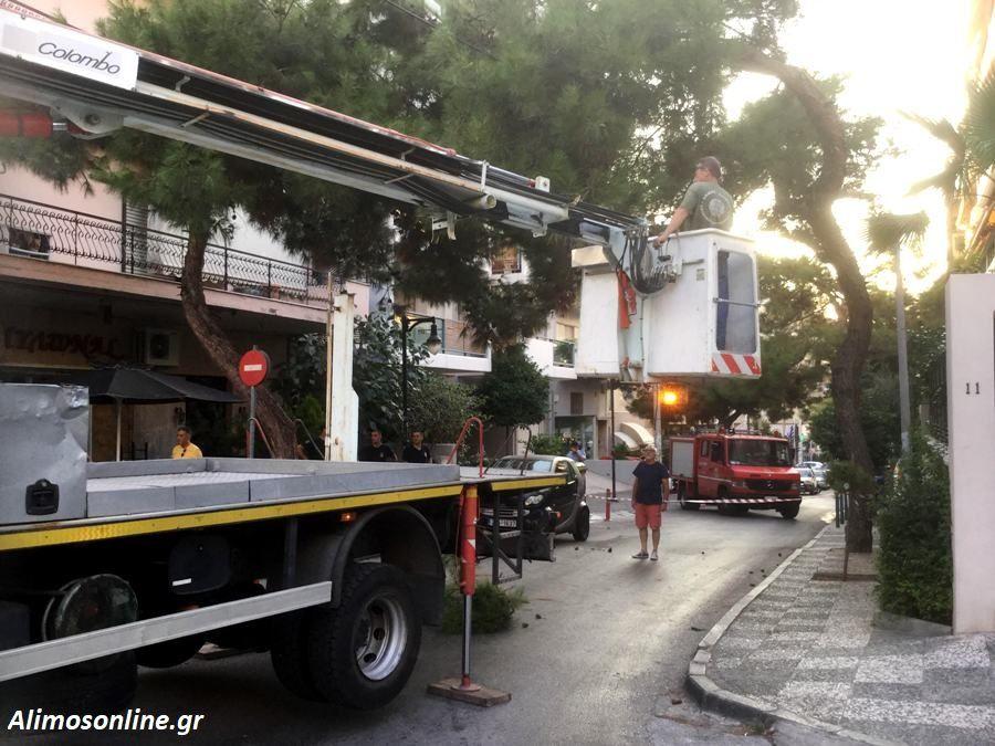 Επιχείρηση της πυροσβεστικής στη Θουκυδίδου ώστε να κοπεί ένα μεγάλο κλαδί δέντρου που ετοιμαζόταν να πέσει