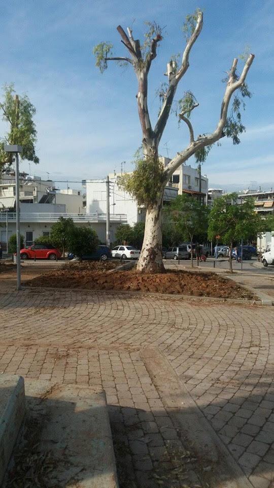 Η πλατεία Παναγούλη «πρασινίζει»