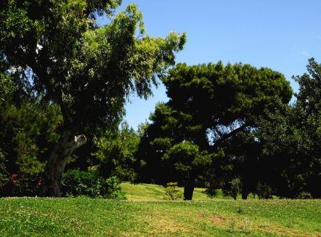 Κλείνουν πάρκα και άλση στην Αττική – Έκκληση για να «Μείνουμε Σπίτι»
