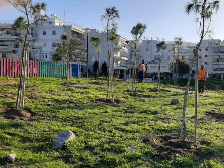 Φυτεύονται δένδρα στην παιδική χαρά της οδού Μανδηλαρά