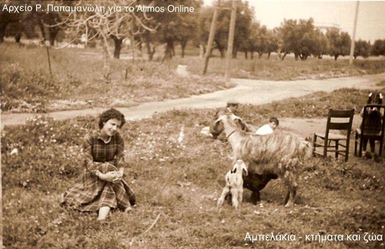 Ξένοιαστη ζωή στα Αμπελάκια του Αλίμου την δεκαετία του '50