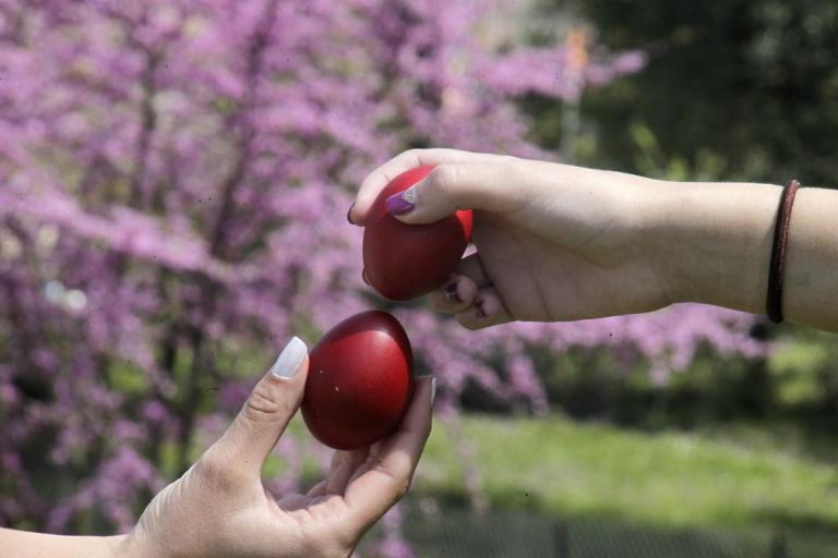 Ποιο αυγό είναι το πιο ανθεκτικό στο τσούγκρισμα; Δείτε τι απαντά επιστημονική συνεργάτης του Πανεπιστημίου Αθηνών