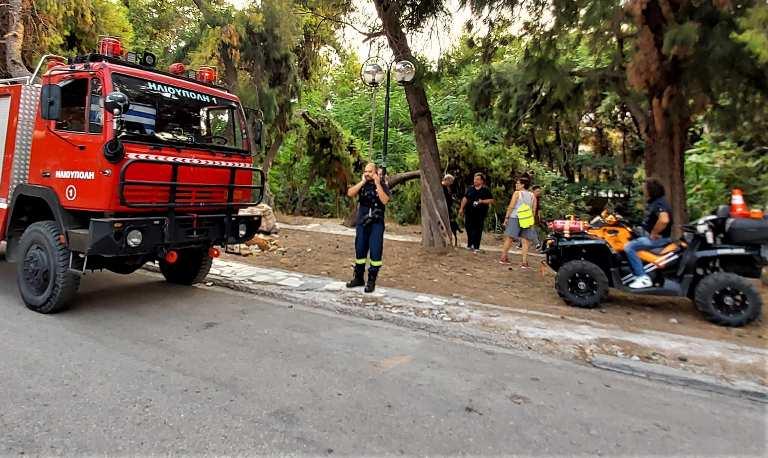 Απόπειρα εμπρησμού καταγγέλλει ο Δήμαρχος Ηλιούπολης για τη φωτιά που ξέσπασε στο ρέμα της Πικροδάφνης
